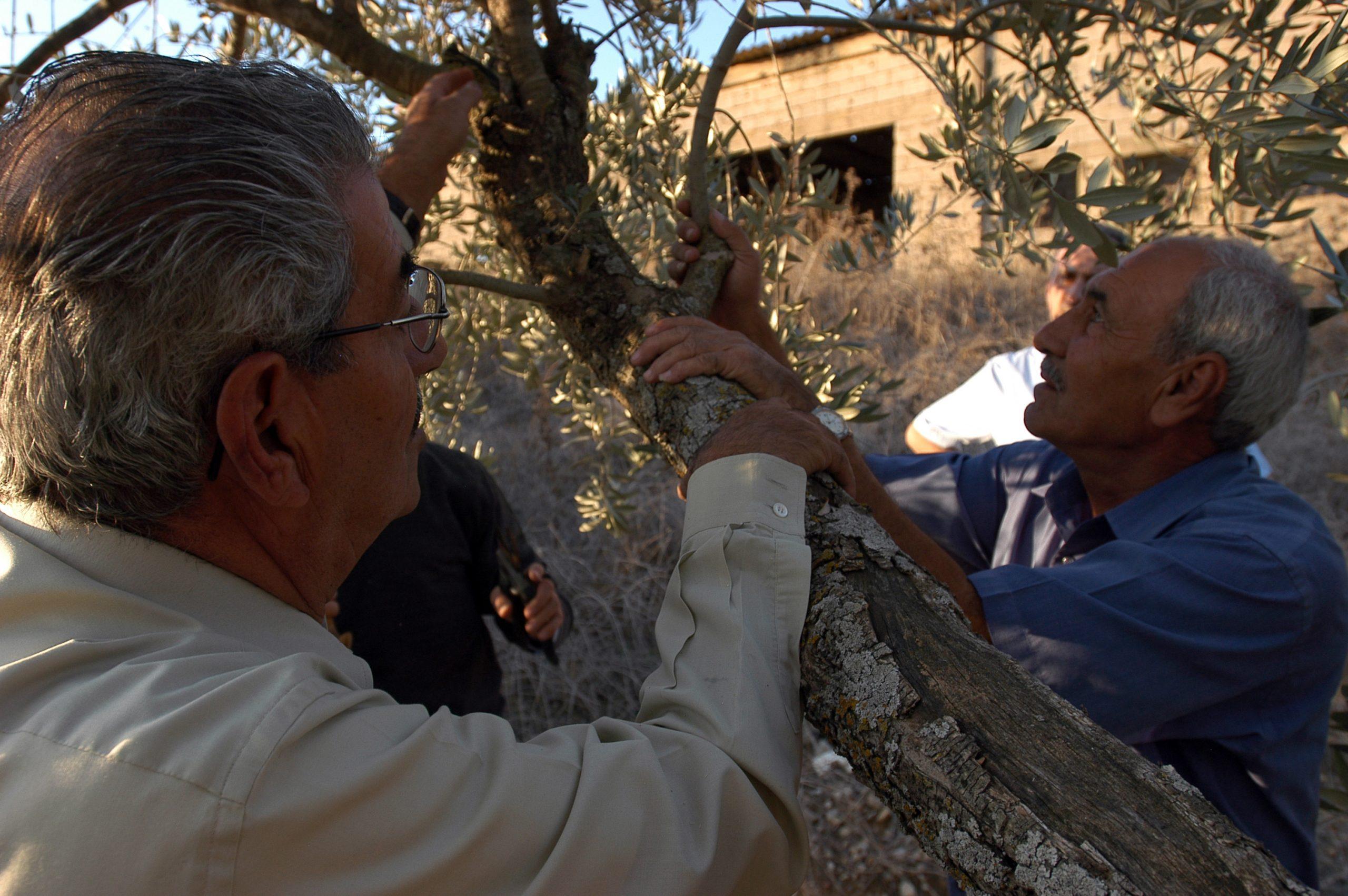 Libano Ottobre 2005 019